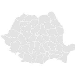 Román nyelvtanfolyam